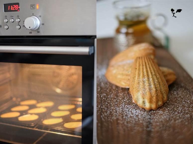 20150921 法式小貝殼餅