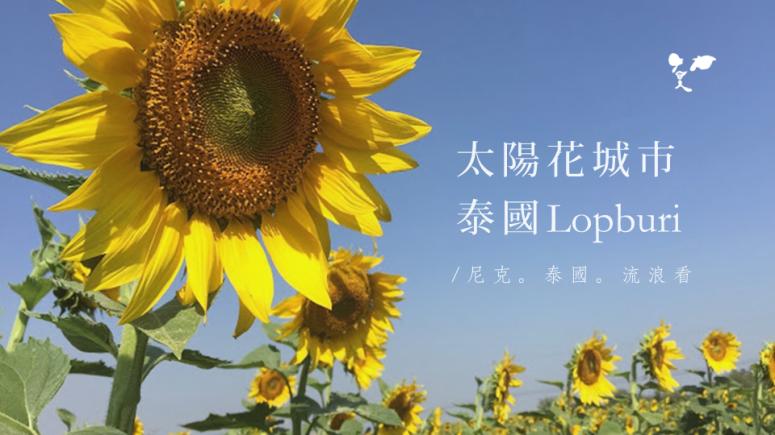 20151201 太陽花城市