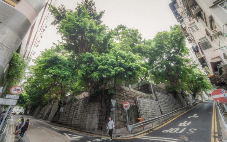 陳艾倫-20150811-佐治五世紀念公園-01