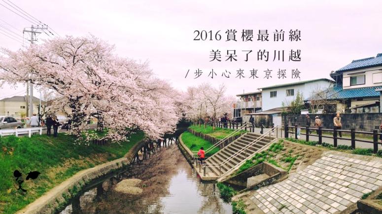 20160408 賞櫻