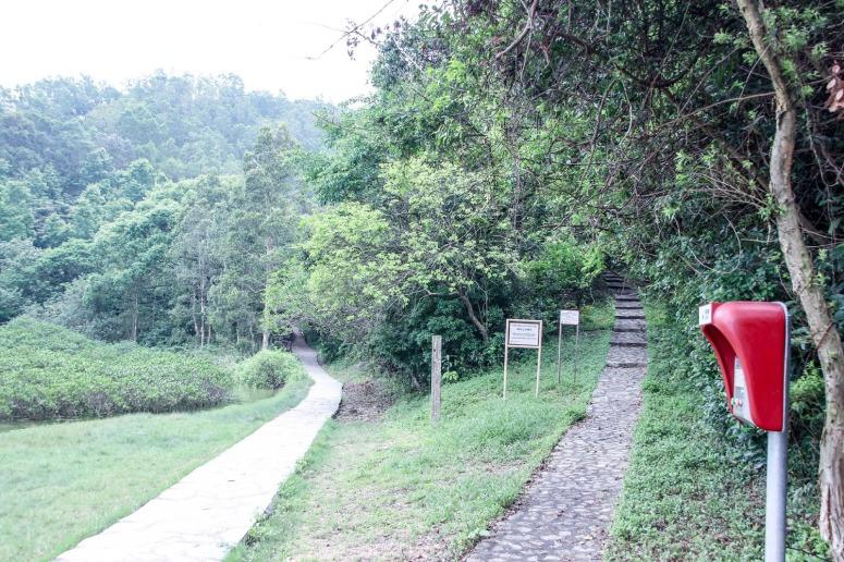 左邊上山:鹿頸家樂徑 右邊平路再上山:谷埔