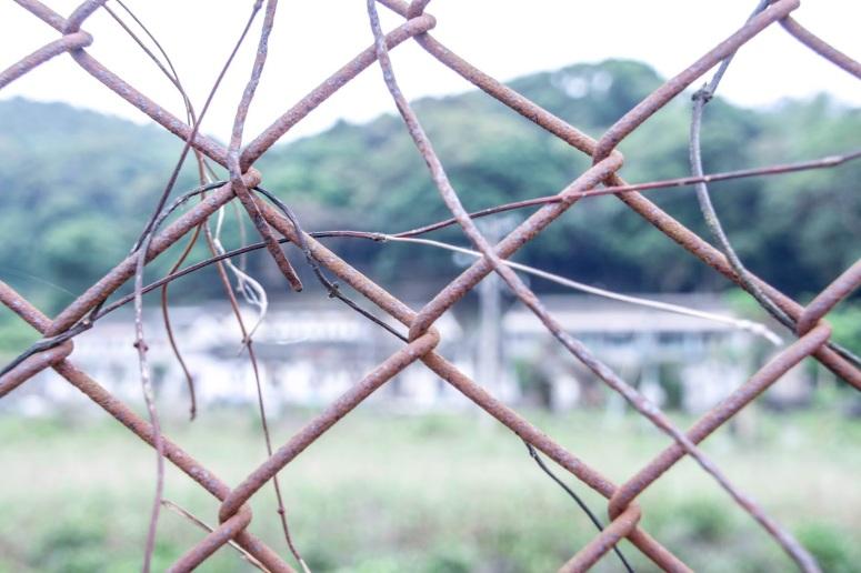 鐵欄裡,是另一個世界